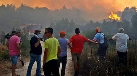 Врайоне Афин случилось несколько лесных пожаров